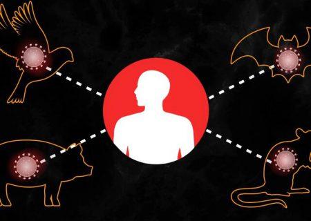 پیشبینی هوش مصنوعی در مورد ویروسهای نو ظهور